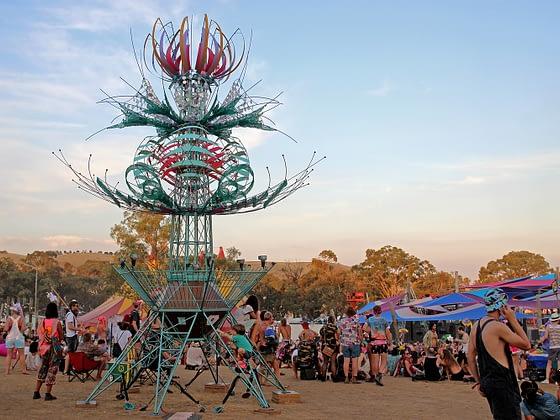 Spherophyte - Rainbow Serpent Festival